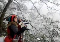 下雪了!2017年广东第一场雪来了! 体验就去清远市金子山原生态旅游风景区