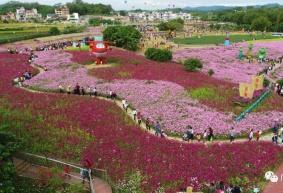 第三届广州西塘稻草艺术节开幕啦
