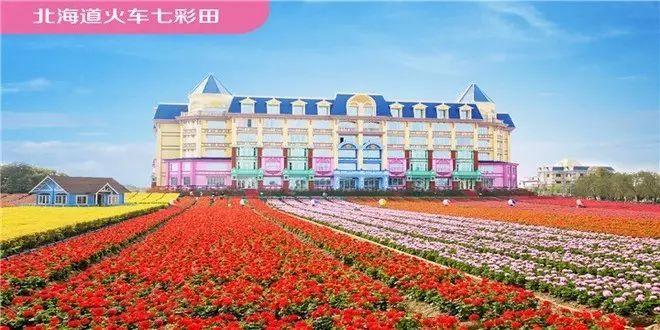 最后三天!广州百万葵园特惠套票6人仅199元,花海、热带雨林、冰爽水世界通玩!