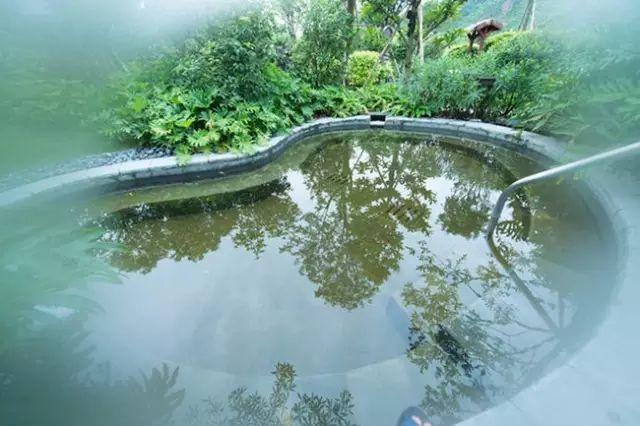 ¥138  龙门富力岭南花园温泉度假山庄纯玩一天!