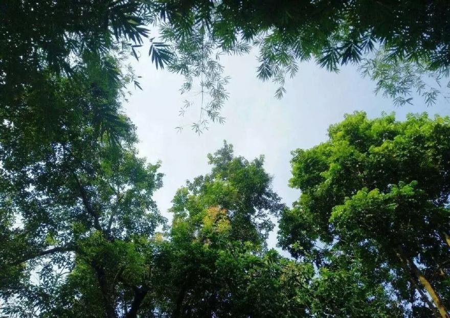【龙门十三汤】远离烦嚣城市,融入纯真大自然,来大自然温泉度假山庄感受纯天然的温矿泉!
