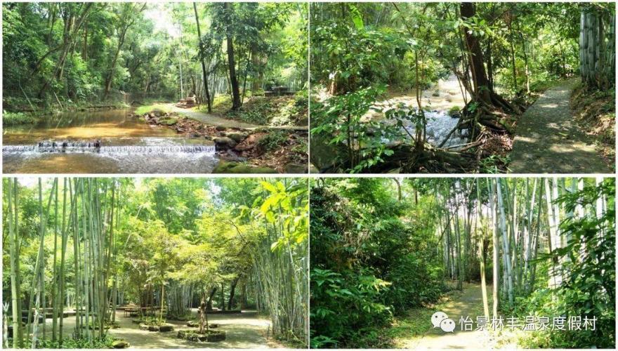 【龙门十三汤之林丰温泉】南昆山麓下的竹林温泉,诗意新林丰,心灵栖息地