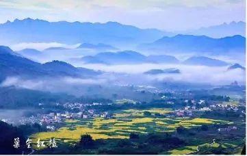 """李花旅游文化节即将开幕~广州这个地方的李花已经盛开,带你去看一场浪漫""""雪色""""~"""